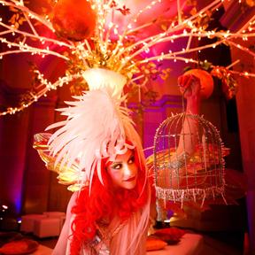 symphony fairy
